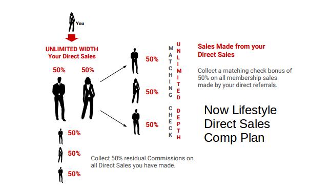Now Lifestyle Direct Sales Comp