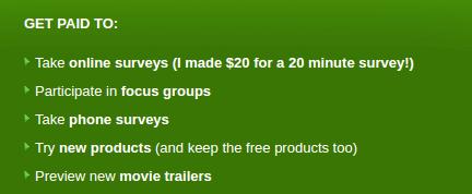 PaidSurveysAtHome Types
