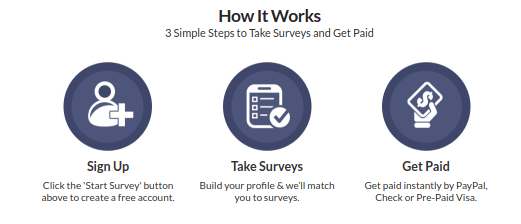 My Survey Jobs com Review: Did It Pass The Test | - Begin At Zero