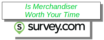 Merchandiser review
