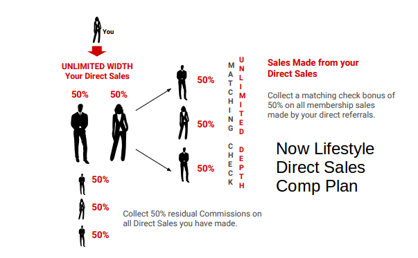 Now Lifestyle Direct Sales Comp