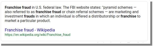 sfe franchise fraud definition
