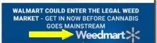 weed millionaire weedmart