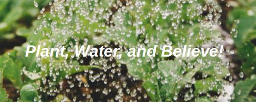 Plant, Water, and Believe!